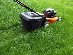 Affordable Lawn Services in Docklands, SE16